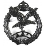 Army Air Corps Pre 1953 Bronzed Cap Badge