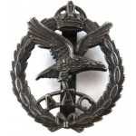 Army Air Corps Toned White Metal Cap Badge