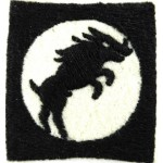 30 Corps Felt Cloth Formation Badge
