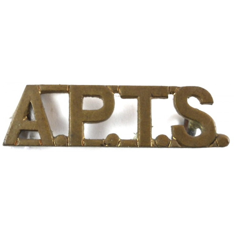 Army Physical Training Staff Brass Shoulder Title