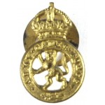 Army Cadet Force Pre 1953 Brass Lapel Badge