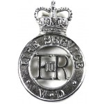 War Department Fire Service Chrome Cap Badge