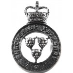 Shropshire Yeomanry Officers Bronze Collar Badge