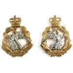 Royal Army Dental Corps Bi Metal Collar Badges