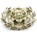 Hampshire Regiment Anodised Aluminium Collar Badge