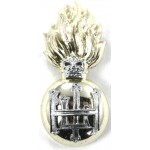 Royal Highland Fusiliers Anodised Collar Badge