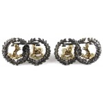 Argyll & Sutherland Highlanders Officers Sil/Gilt Collar Badges