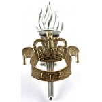 Education & Training Service Officers Silver/Gilt Plated Cap Badge