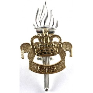 Educational & Training Services Officers Silver/Gilt Plated Cap Badge