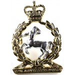 Royal Army Veterinary Corps E11R Officers Bi Metal