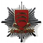 Essex County Fire & Rescue Service Bi Metal Cap Badge
