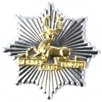 Herts Fire Brigade Brass/Chrome Cap Badge