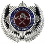 New Zealand Hikurangi Fire Service Chrome/Enamel Cap Badge