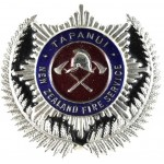 New Zealand Tapanui Fire Service Chrome/Enamel Cap Badge