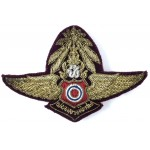Thailand Air Force Command Pilot Military Aircrew Wing Badge