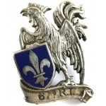 France 67th Infantry Regiment Drago Breast Badge