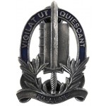 Netherlands Police Raalte Grey Metal Breast Badge