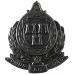 Dublin Metropolitan Police Blackened Night Helmet Badge