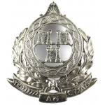 Dublin Metropolitan Police White Metal Day Helmet Badge