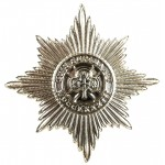 Irish Guards Anodised Aluminium Cap Badge