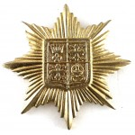 13th London Kensington Brass Cap Badge