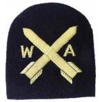 Royal Navy WRNS Weapons Analyst