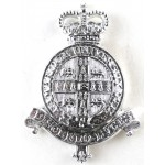 Cambridge University OTC Anodised Aluminium Cap Badge