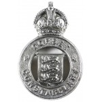 Dorset Constabulary Pre 1953 Chrome Cap Badge