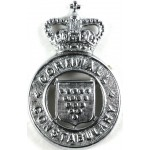 Cornwall Constabulary Chrome Cap Badge