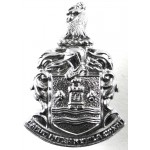 Gateshead Police Chrome Collar Badge
