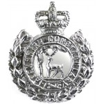 Berkshire Constabulary Collar Badge