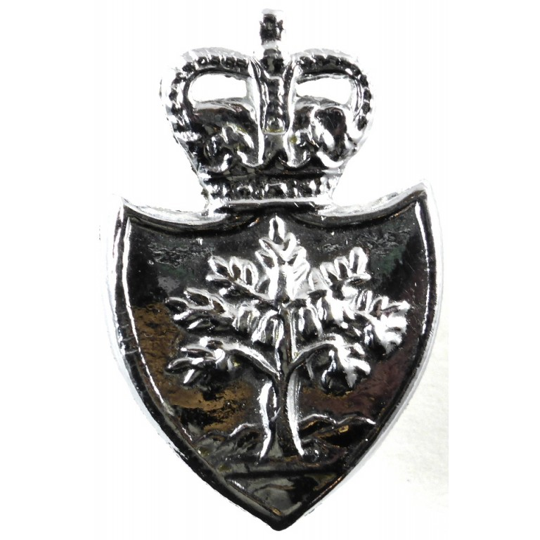Worcestershire Police Chrome Collar Badge