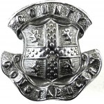 Durham County Constabulary Chrome Collar Badge