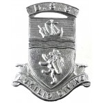 Devon Special Constabulary Chrome Collar Badge