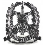 Hampshire Police Chrome Collar Badge