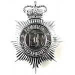 Dorset Constabulary Chrome Helmet Badge