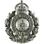 Dudley Police White Metal Helmet Badge