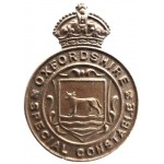 Oxfordshire Special Constable Bronze Lapel Badge