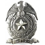 Can You Identify French Colonial CNS White Metal Badge Drago