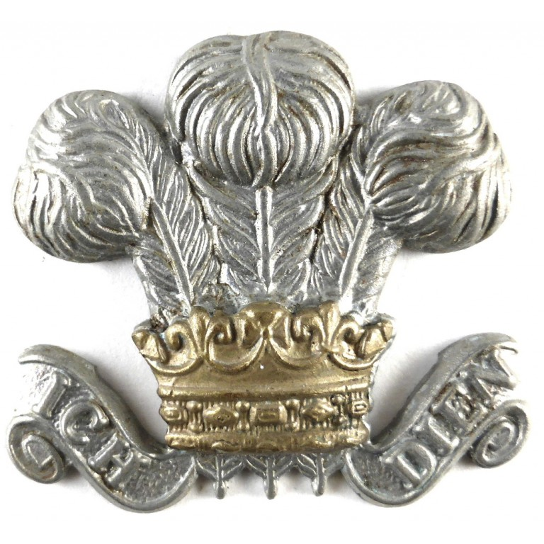 Royal Wiltshire Yeomanry Bi Metal Cap Badge