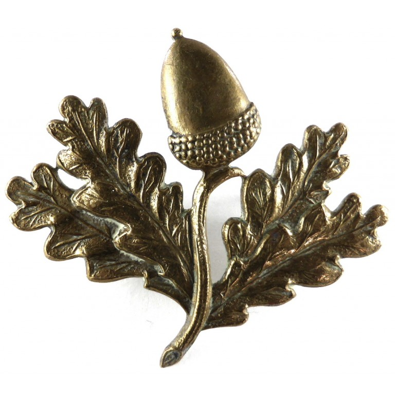 South Notts Hussars Brass Cap Badge